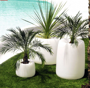 Organic planters online at potstore.co.uk